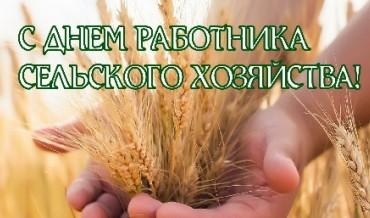 С Днем работника сельского хозяйства!